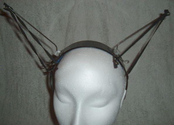 Demo Ears